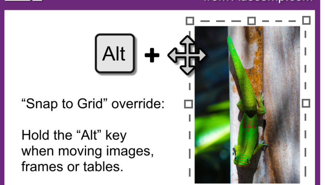 """Tips and Tricks for OneNote users: Hold the """"Alt"""" key when moving images, frames and tables to override """"Snap to Grid"""". Please share."""