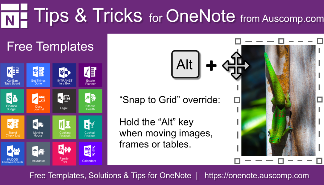 """Tips & Tricks for OneNote: Hold the Alt key when moving images & frames to override """"Snap to Grid""""."""